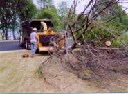 St. Croix Brush Hauling and Chipping